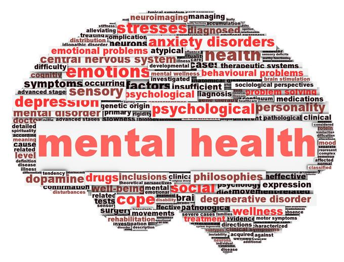 MENTAL HEALTH SERVICES FOR STUDENTS  (EC §49428)